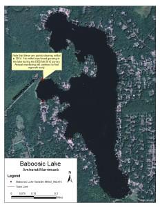Baboosic Lake Milfoil Map_Fall 2015